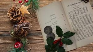 Lesescouts verzaubern den Advent